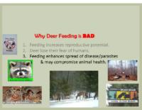 Slide 11_Englewood Present Deer Mgmt june2019