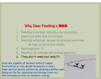 Slide 14_Englewood Present Deer Mgmt june2019