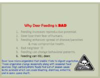 Slide 15_Englewood Present Deer Mgmt june2019