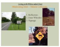 Slide 27_Englewood Present Deer Mgmt june2019