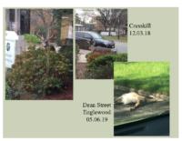 Slide 2_Englewood Present Deer Mgmt june2019
